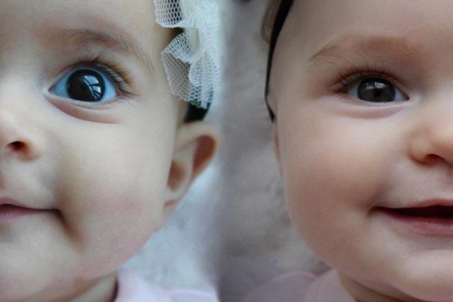 Mila & Marlowe at 5 months, 2 years apart